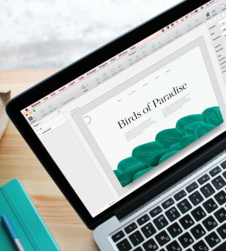 Веб-дизайн: руководство по различным типам веб-сайтов